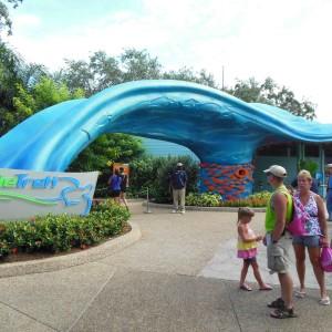 Turtle Trek: a novidade no Sea World Park em Orlando!