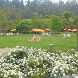 Hotel Review: Novotel Vitacura, um Hotel na região chique de Santiago do Chile!