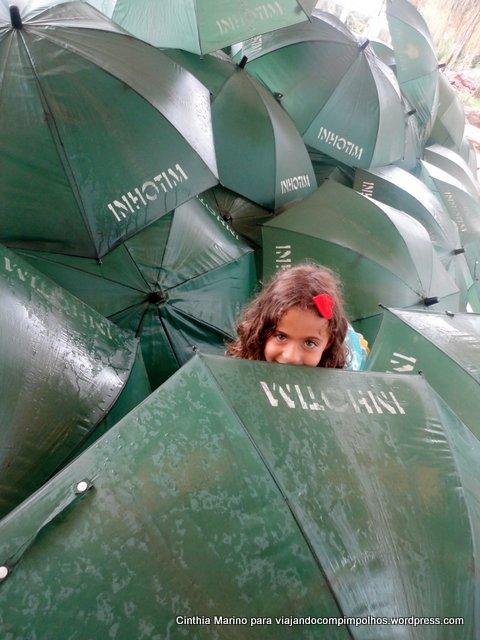 guarda-chuvas sofia