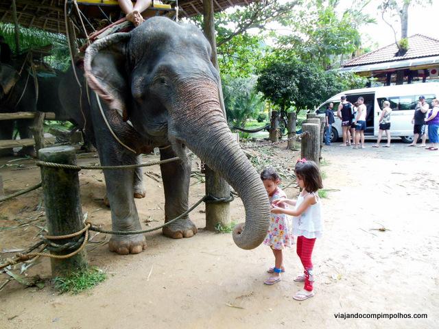 Safari Phuket com crianças