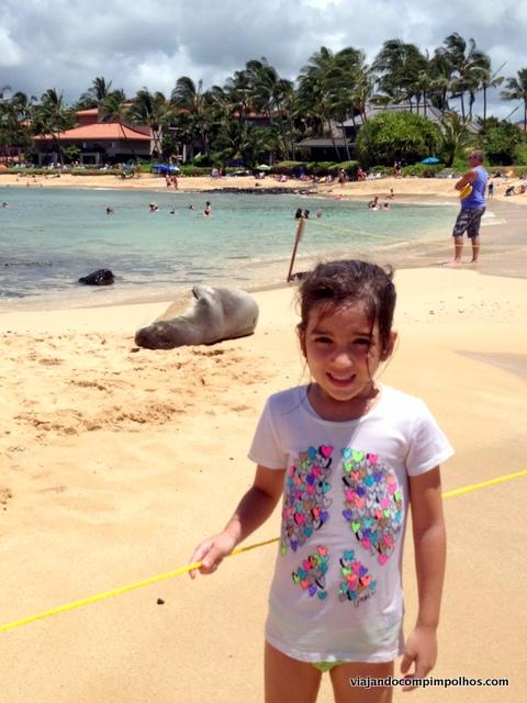 Poipu Beach with Hawaiian Seal Monkey