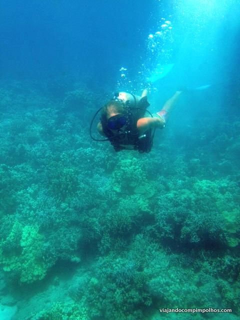 Mergulhador em Maui