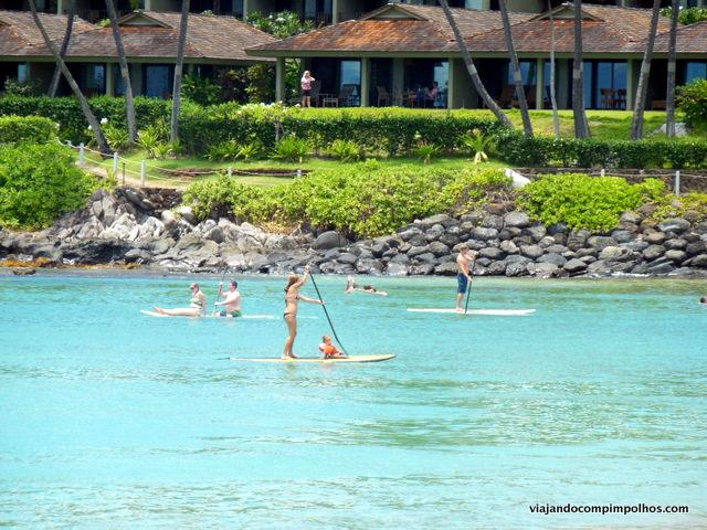 Napili Beach, Stand Up Paddle, Maui