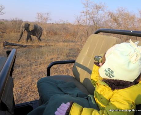 Viaje para a África do Sul nas férias de Julho!