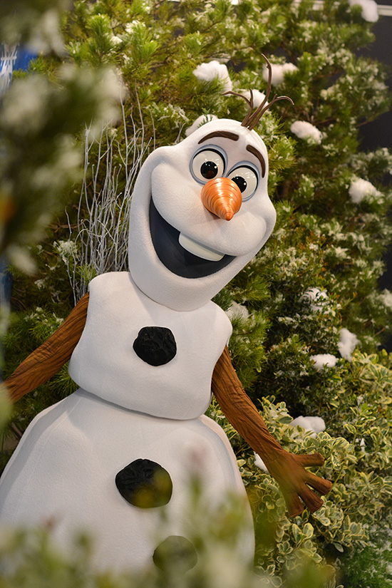 A new character experience with everyoneÕs favorite snowman, Olaf, debuts this spring at DisneyÕs Hollywood Studios. From DisneyÕs blockbuster film ÒFrozen,Ó Olaf will be living his dream ÒIn Summer,Ó chilling on the beach and ready with warm hugs for all his friends. HeÕll greet guests in the all-new Celebrity Spotlight in the Echo Lake area of DisneyÕs Hollywood Studios. Disney's Hollywood Studios is one of four theme parks at Walt Disney World Resort in Lake Buena Vista, Fla. (Disney)