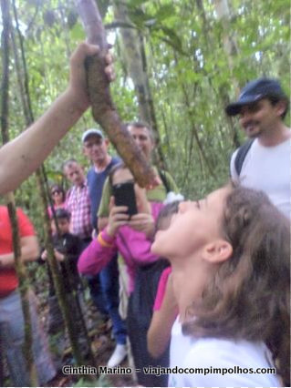 sobrevivencia-na-selva